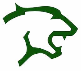 Arthur P Schalick High School logo